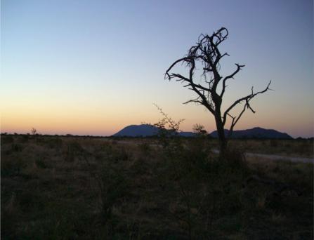 南アフリカ・サファリの日没